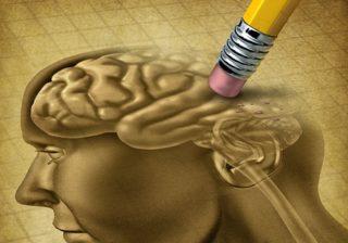 Hersenen worden uitgewist